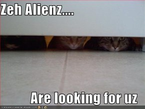 Zeh Alienz....  Are looking for uz