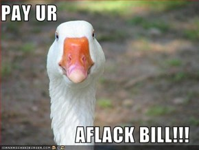 PAY UR  AFLACK BILL!!!