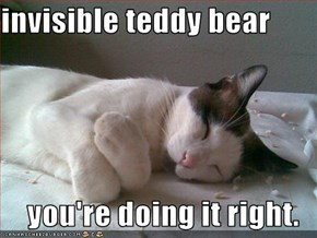 invisible teddy bear  you're doing it right.