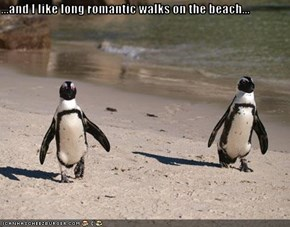...and I like long romantic walks on the beach...