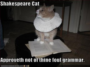 Shakespeare Cat  Approveth not of thine foul grammar.