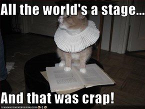 All the world's a stage...  And that was crap!