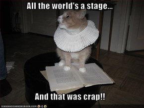 All the world's a stage...  And that was crap!!