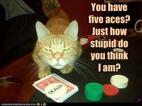 You have  five aces? Just how stupid do  you think  I am?