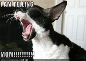 I AM TELLING  MOM!!!!!!!!!!!