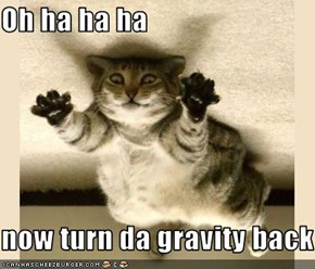 Oh ha ha ha   now turn da gravity back on