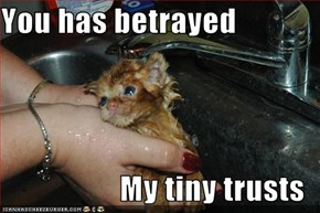 You has betrayed  My tiny trusts