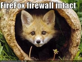 FireFox firewall intact