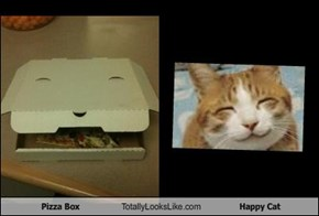 Pizza Box Totally Looks Like Happy Cat