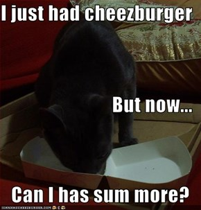 I just had cheezburger But now... Can I has sum more?