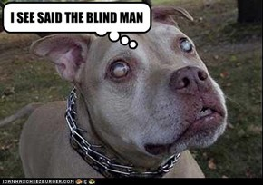 BLIND MAN'S RUFF