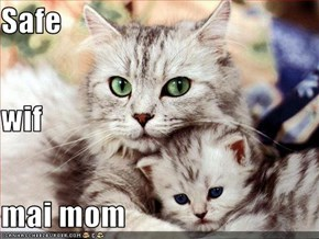 Safe wif mai mom