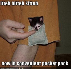 Itteh bitteh kitteh    now in convenient pocket pack