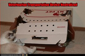 Veterinarian Transportation Device Neutralized