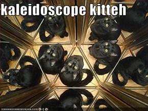 kaleidoscope kitteh