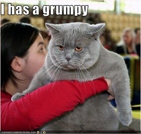 I has a grumpy