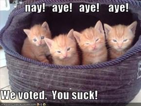 nay!   aye!   aye!    aye!  We voted.  You suck!