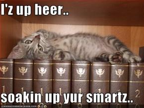 I'z up heer..  soakin up yur smartz..