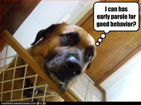 I can has early parole for good behavior?