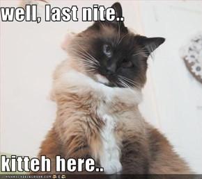 well, last nite..  kitteh here..