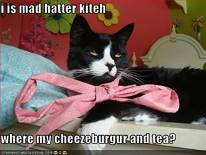 i is mad hatter kiteh  where my cheezeburgur and tea?