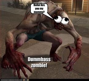 Stupid ass zombie