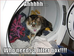 Ahhhhh....  Who needs a litter box!!!!