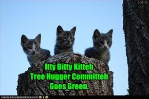 Itty Bitty Kitteh Tree Hugger Committeh Goes Green.