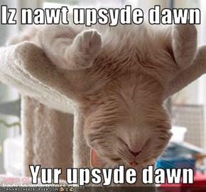 Iz nawt upsyde dawn  Yur upsyde dawn