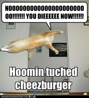Hoomin tuched cheezburger