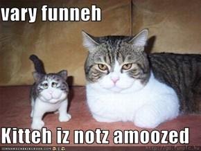 vary funneh  Kitteh iz notz amoozed
