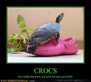 Turtles & Crocs Don't Mix