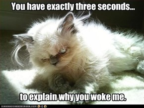 You have exactly three seconds...