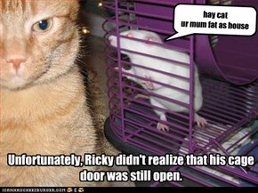 Unfortunately, Ricky didn't realize that his cage door was still open.