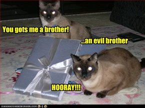 You gots me a brother!
