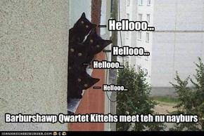 Hellooo...