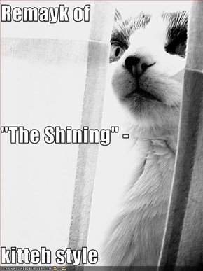 "Remayk of  ""The Shining"" - kitteh style"
