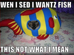 WEN I SED I WANTZ FISH  THIS NOT WHAT I MEAN
