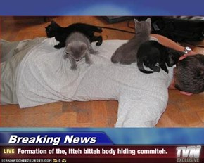 Breaking News - Formation of the, itteh bitteh body hiding commiteh.