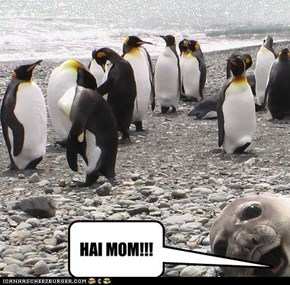 HAI MOM!!!