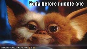 Yoda before middle age