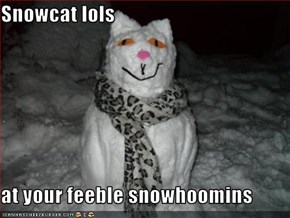 Snowcat lols  at your feeble snowhoomins