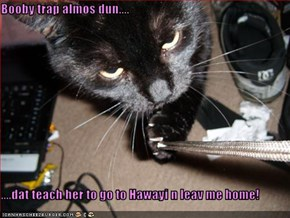 Booby trap almos dun....  ....dat teach her to go to Hawayi n leav me home!