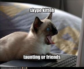 skype kitteh