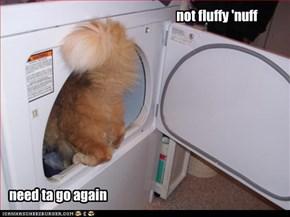 not fluffy 'nuff