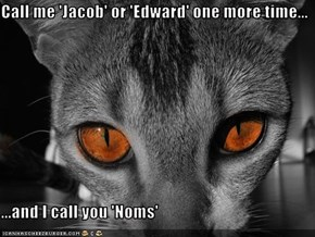 Call me 'Jacob' or 'Edward' one more time...  ...and I call you 'Noms'