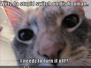 Werz da stupid switch on dis hooman..  I needz to turn it off!!