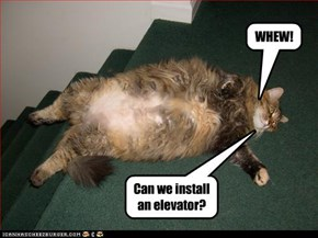 Can we install an elevator?