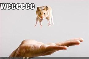 weeeeee