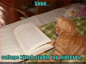 Shhh...   college kitteh studin for midtermz.